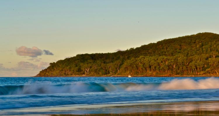 Noosa Heads Queensland Best Surfing Beaches Australia   DesignMyNight