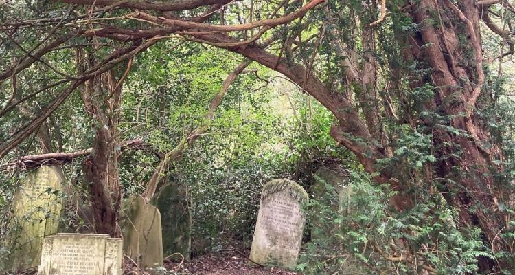 Nunhead Cemetery | Peckham |  DesignMyNight
